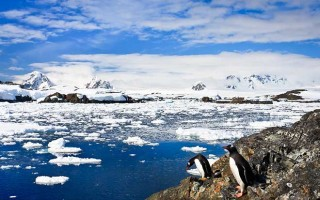 Classic Antarctica (Silver Explorer)