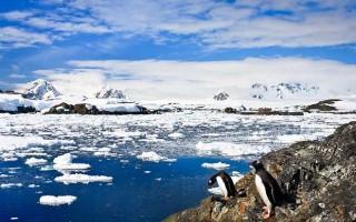 Classic Antarctica Fly Cruise (Ocean Nova)